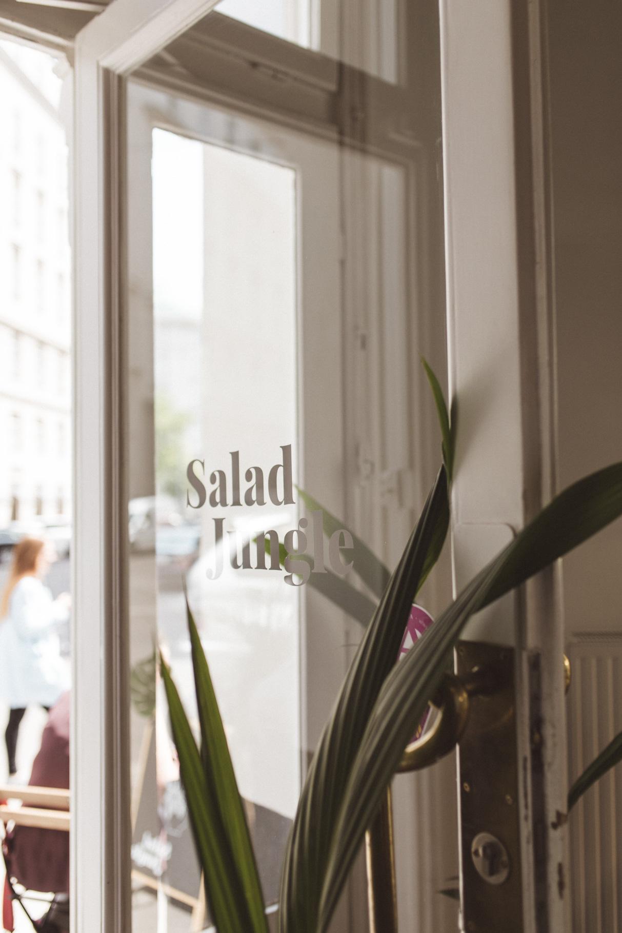 wien tipp, guide, salad jungle, annalaurakummer, hanna gassner ,vegan, restaurant